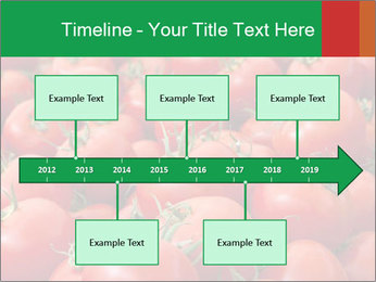 Tomatoes PowerPoint Template - Slide 28