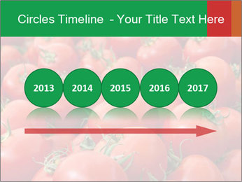 Tomatoes PowerPoint Template - Slide 29
