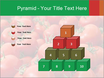 Tomatoes PowerPoint Template - Slide 31