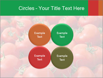 Tomatoes PowerPoint Template - Slide 38