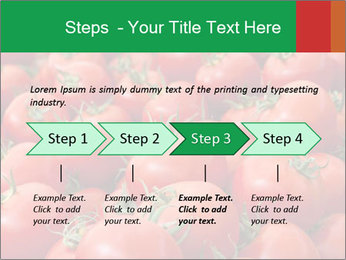 Tomatoes PowerPoint Template - Slide 4