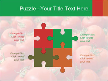 Tomatoes PowerPoint Template - Slide 43
