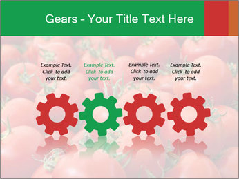 Tomatoes PowerPoint Template - Slide 48