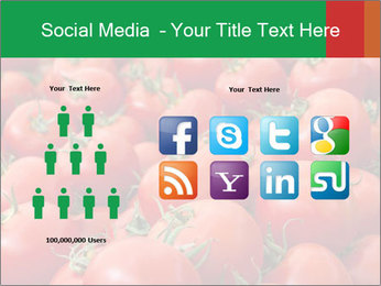 Tomatoes PowerPoint Template - Slide 5