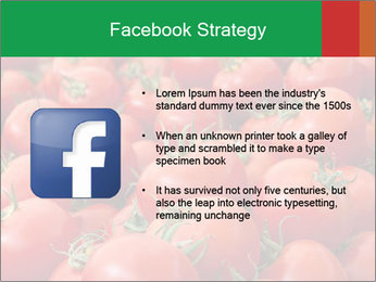 Tomatoes PowerPoint Template - Slide 6