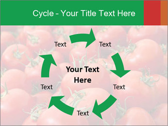 Tomatoes PowerPoint Template - Slide 62