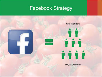 Tomatoes PowerPoint Template - Slide 7