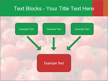 Tomatoes PowerPoint Template - Slide 70