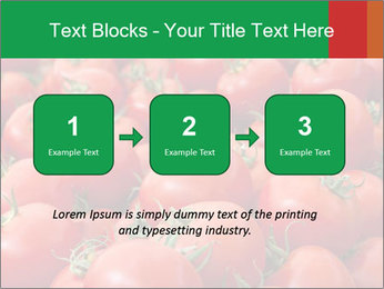 Tomatoes PowerPoint Template - Slide 71