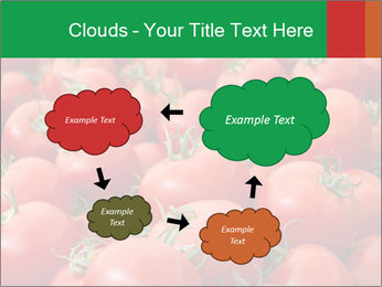 Tomatoes PowerPoint Template - Slide 72