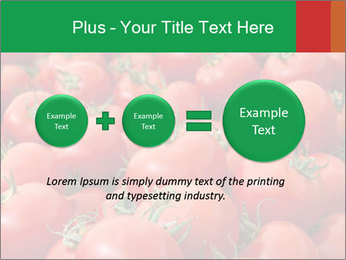 Tomatoes PowerPoint Template - Slide 75