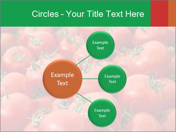 Tomatoes PowerPoint Template - Slide 79