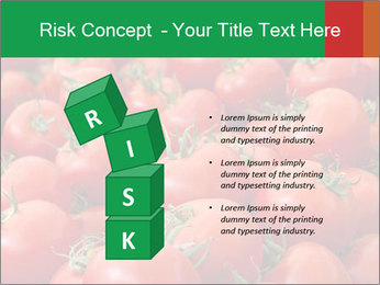 Tomatoes PowerPoint Template - Slide 81