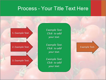 Tomatoes PowerPoint Template - Slide 85