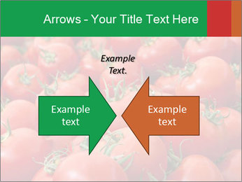Tomatoes PowerPoint Template - Slide 90