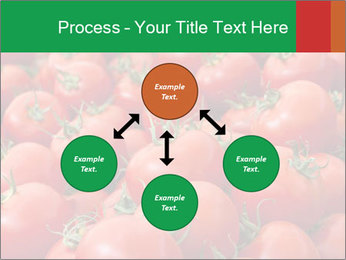 Tomatoes PowerPoint Template - Slide 91