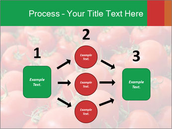 Tomatoes PowerPoint Template - Slide 92