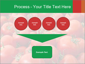 Tomatoes PowerPoint Template - Slide 93