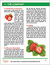 0000092724 Word Template - Page 3