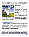 0000092725 Word Template - Page 4