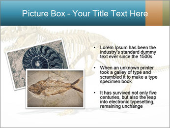 T-Rex PowerPoint Template - Slide 20