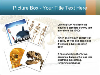 T-Rex PowerPoint Template - Slide 23