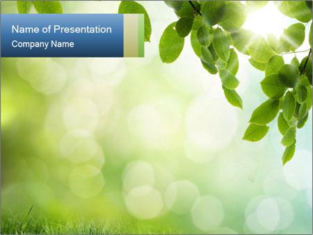 Natural green focus PowerPoint Template