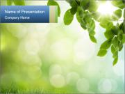 Natural green focus PowerPoint Templates