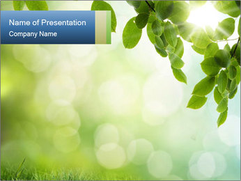 Natural green focus PowerPoint Template