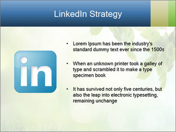 Natural green focus PowerPoint Template - Slide 12