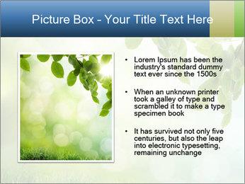 Natural green focus PowerPoint Template - Slide 13