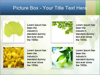 Natural green focus PowerPoint Template - Slide 14