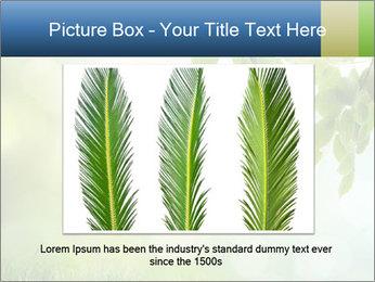 Natural green focus PowerPoint Template - Slide 15
