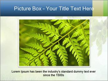 Natural green focus PowerPoint Template - Slide 16