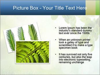 Natural green focus PowerPoint Template - Slide 20