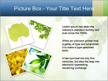 Natural green focus PowerPoint Template - Slide 23
