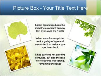 Natural green focus PowerPoint Template - Slide 24