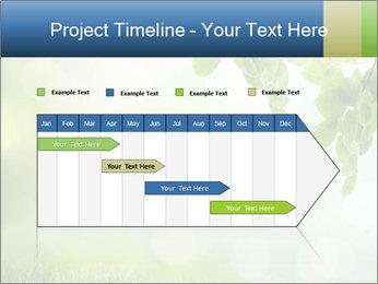 Natural green focus PowerPoint Template - Slide 25