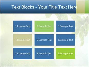Natural green focus PowerPoint Template - Slide 68