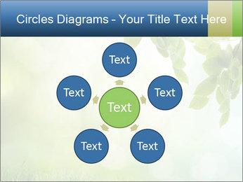 Natural green focus PowerPoint Template - Slide 78