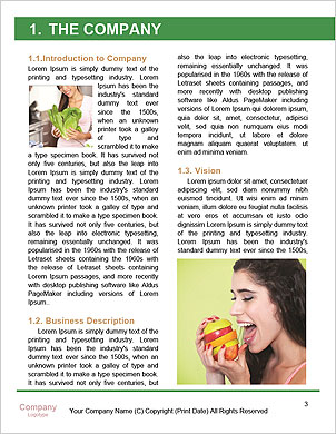 0000092743 Word Template - Page 3