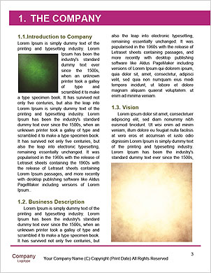 0000092746 Word Template - Page 3