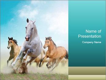 Horses in dust PowerPoint Template - Slide 1