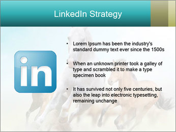 Horses in dust PowerPoint Template - Slide 12
