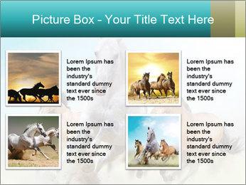 Horses in dust PowerPoint Template - Slide 14