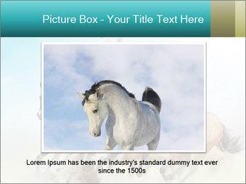 Horses in dust PowerPoint Template - Slide 15