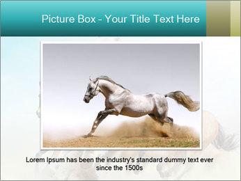 Horses in dust PowerPoint Template - Slide 16