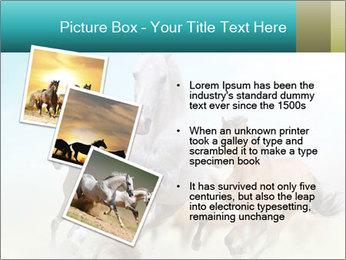 Horses in dust PowerPoint Template - Slide 17