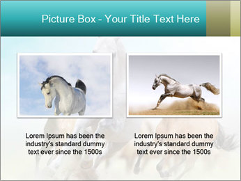 Horses in dust PowerPoint Template - Slide 18