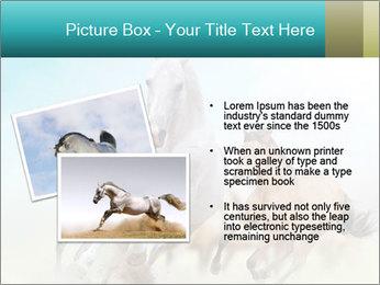 Horses in dust PowerPoint Template - Slide 20